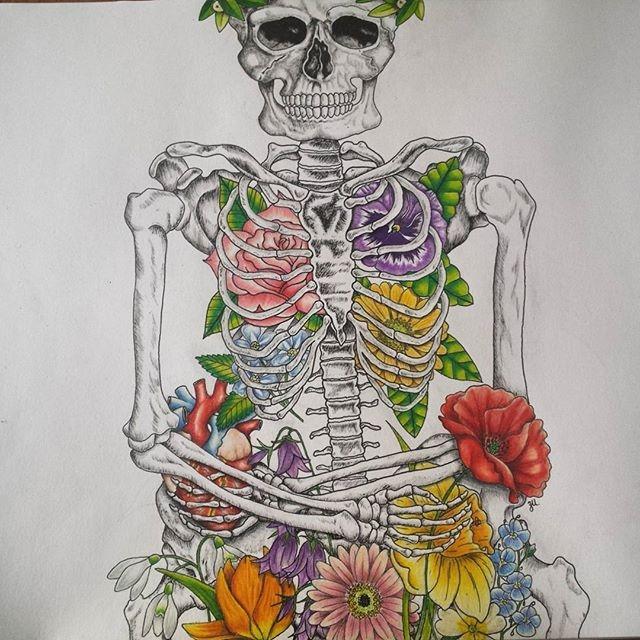 Skeletal Beauty I