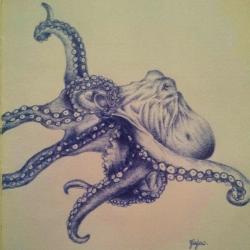 Mr Octopus
