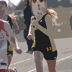 Run Hampster Run